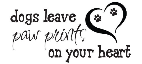 Spreuk dogs leave pawprints on your heart