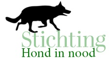 Stichting Hond in nood
